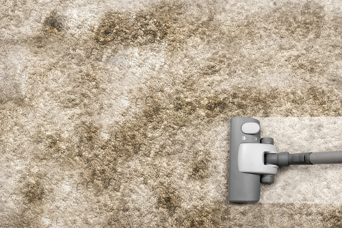 Dirty Carpet Cleaning NYC