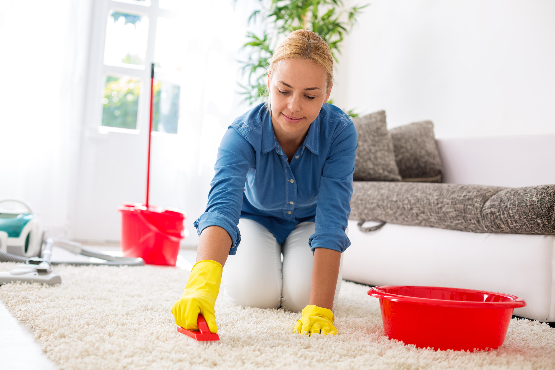 Картинки очистка домашних